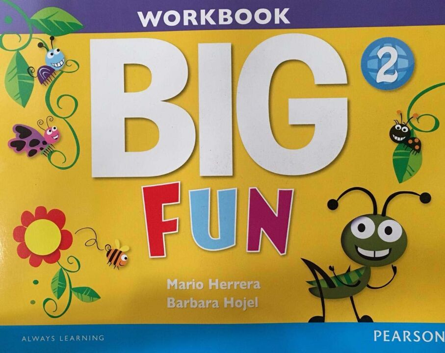 Big Fun 2 Workbook With Audio Cd thumbnail
